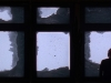dani_window-1024x605