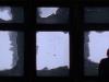 dani_window-500x295