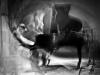 Thollem_McDonas_by_Peter_Gannushkin-08
